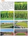 扬州人造草坪